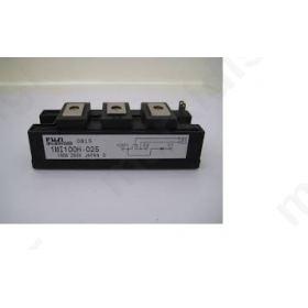 MODULE IGBT 100A/250V 1MI100H-025