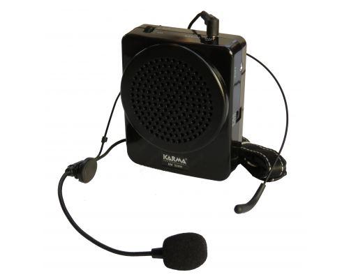25W belt amplifier