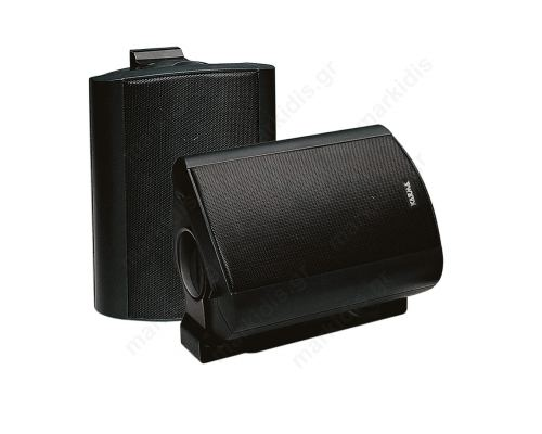 100W surround speaker