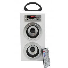 20W tower speaker